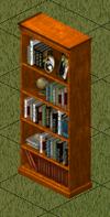 Ts1 amishim bookcase.png