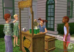 Lemonade stand.jpg