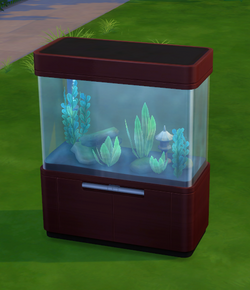 Swim with the fishes.png