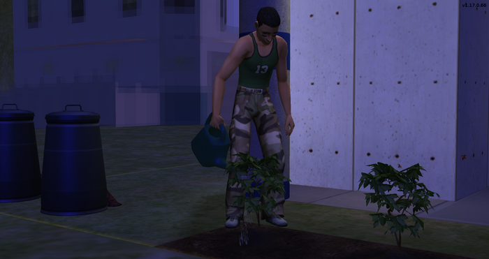 Serge Barb watering his plants.png