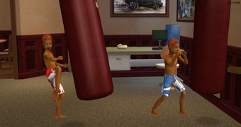 Jared and Tommy Urban using the punching bags on a summer morning.png